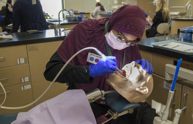 Students learning dental skills at Scrubs Camp.