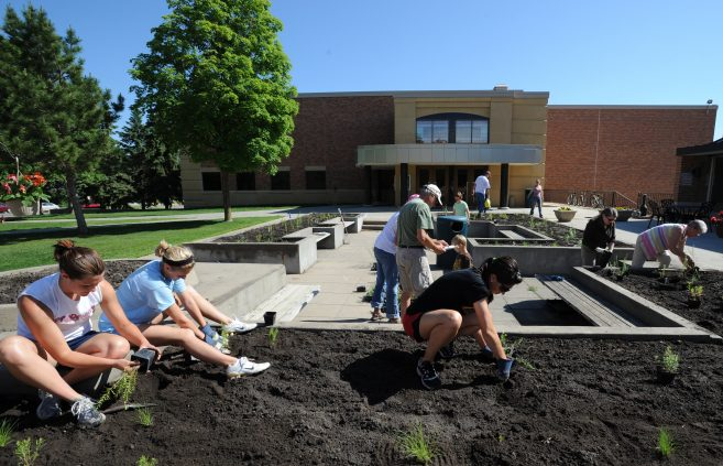 Landscaping between Memorial Hall and the library.