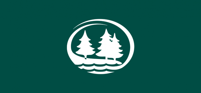 BSU tree logo page header