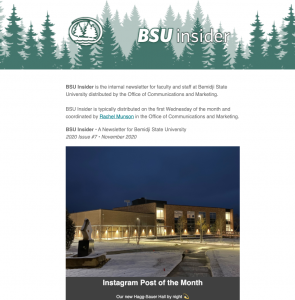 Click to read the most recent issue of BSU Insider