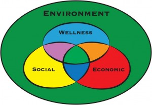 Colorful Wellness Model