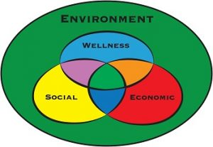 BSU's Wellness Model for Sustainability